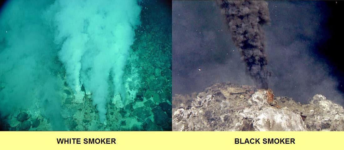 Image result for black smoker vs white smoker
