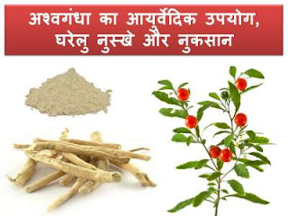 ashwagandha-uses-in-hindi