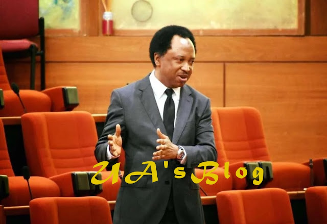 Snatch of senate mace: Presidency may be next – Shehu Sani