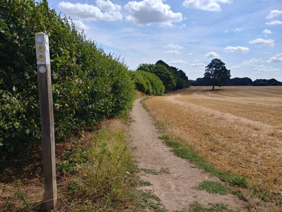 Footpath along walk 82 the Kimpton N Short Loop - August 2018  Image by Hertfordshire Walker released under Creative Commons BY-NC-SA 4.0
