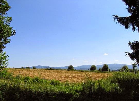 Pola i łąki między Długopolem-Zdrojem i drogą krajową nr 33. Na horyzoncie widoczne są już wzniesienia masywu Śnieżnika.