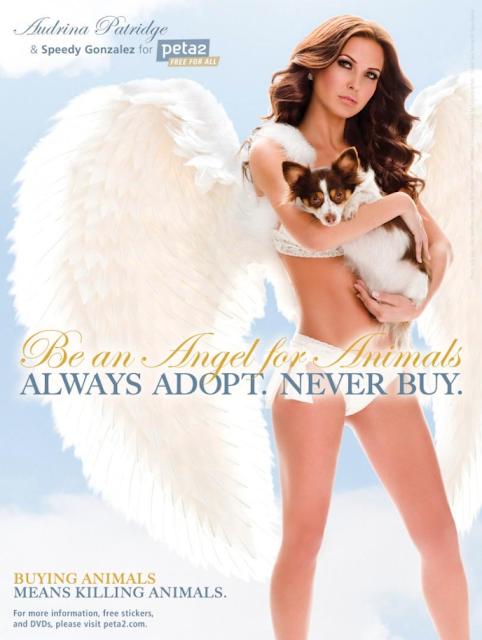 Audrina Patridge goes nude for PETA