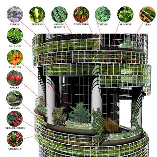 The Low-Cost Innovation of Vertical Farming