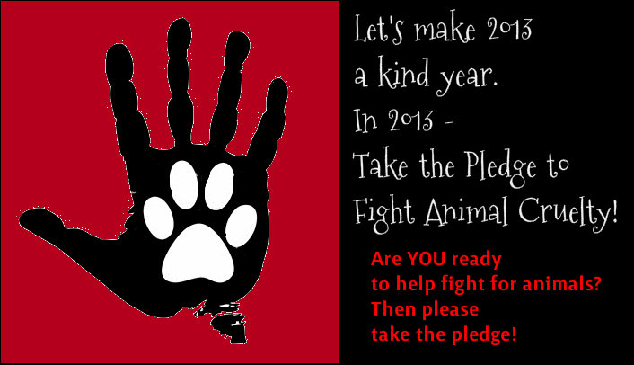 PLEDGE to make 2013 a kind year for Animals.