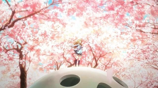 Shigatsu Wa Kimi No Uso Cherry Blossom