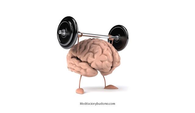 Entrenar tu mente mejora tu salud hasta el 66%