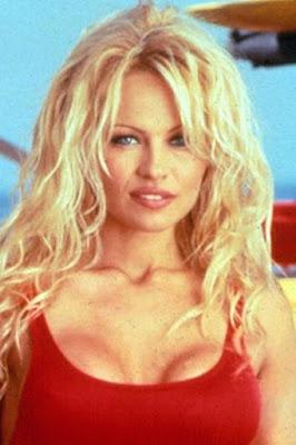 قصة حياة باميلا اندرسون (Pamela Anderson)، موديل وممثلة كندية.