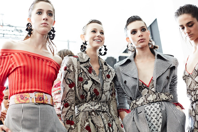 Altuzarra Spring 2017 Ready-to-Wear Collection