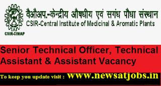 cimap-Senior-Technical-Officer-Technical-Vacancy