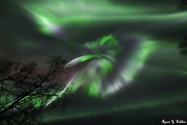 Auroras boreais - Fairbanks, Alasca
