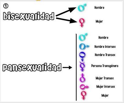 Mujer bisexual definicion