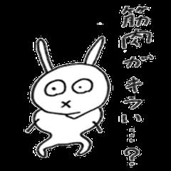 super muscle rabbit
