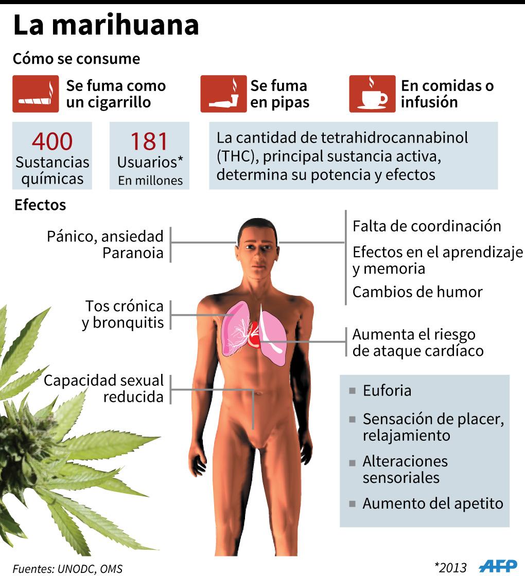 Efectos positivos de fumar marihuana