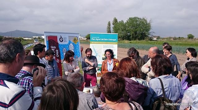 64ª edició de la Fira d'Espàrrecs de Gavà, Producte Fresc del Parc Agrari del Baix Llobregat