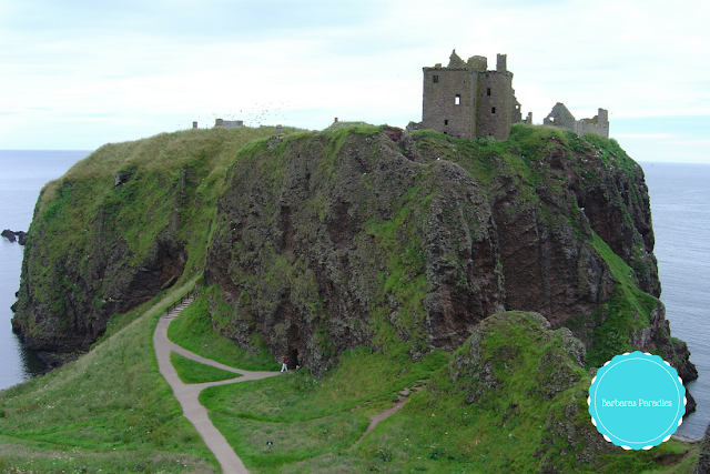 Lesetipps für Schottland-Fans - 7 Buchtipps, die euch nach Schottland entführen - Dunottar Castle