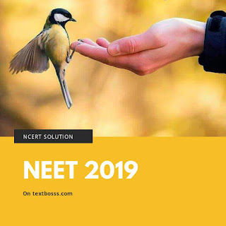 what is NEET exam
