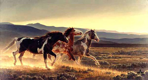 45 mil caballos salvajes serían asesinados por los EE. UU.