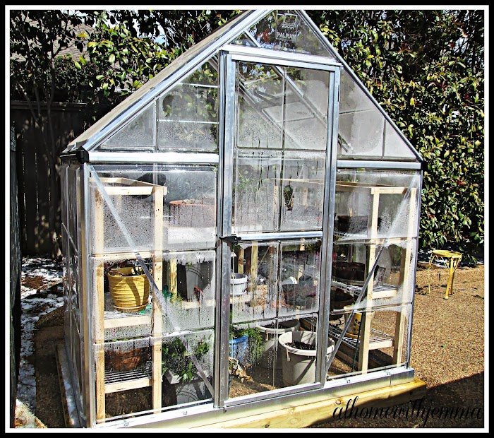 Greenhouse Tales