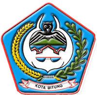 http://jobsinpt.blogspot.com/2012/05/240-cpns-kota-bitung-terima-sk-100-pada.html
