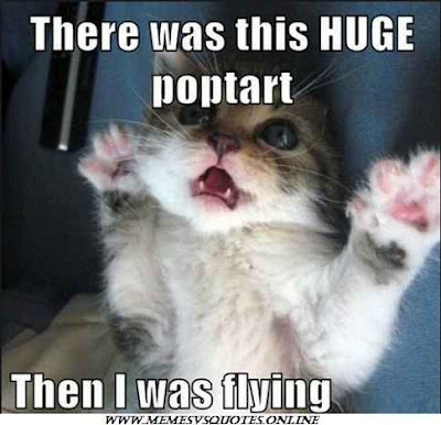 I Was Flying