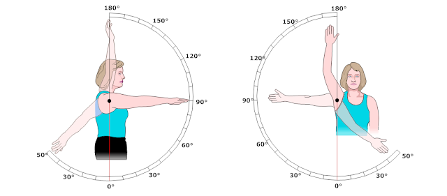 https://www.smartdraw.com/physical-therapy-andrehabilitation/examples/range-of-motion-shoulder/