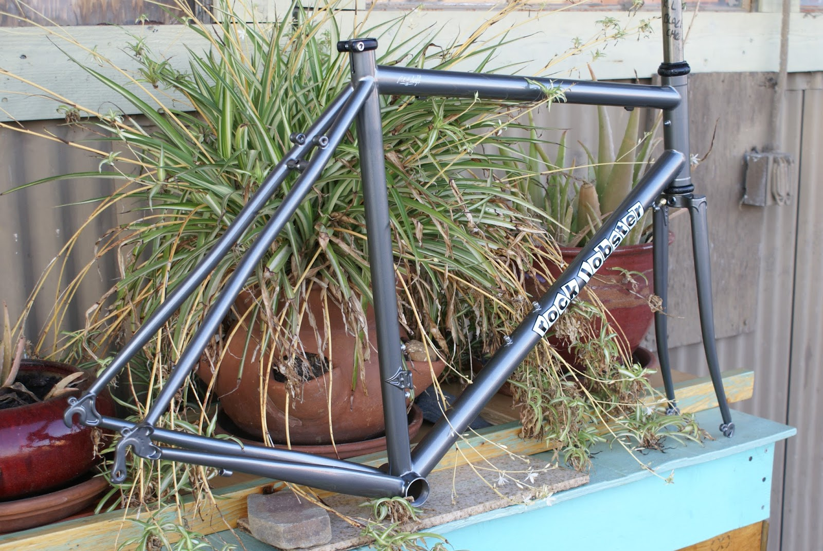 what\'s up in Santa Cruz: Steel big tire road frame for Santa Monica
