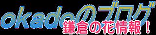 鎌倉の花情報