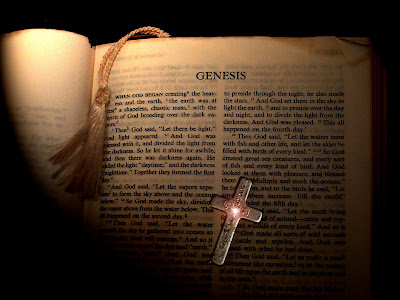 Bible, Christian, Curse, Daily Dose, Fall of Man, Genesis 5 vs 29, God, Holy Book, Memory Verse, Old Testament, Punishment, Scripture, Verse, Verse Of The Day, Judgement, Noah, Lamech, Comfort, Work, Toil, Ground,