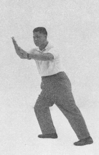 Tai Chi Chuan (Square Form) 116. Step Up, Grasping The Bird's Tail