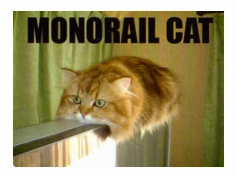 monarail cat