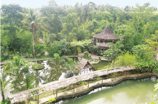 Lokasi Pemancingan Desa Wisata Petingsari