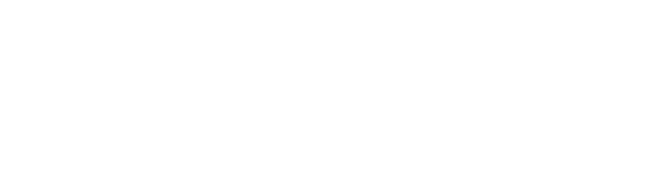 20 Model Mgmt