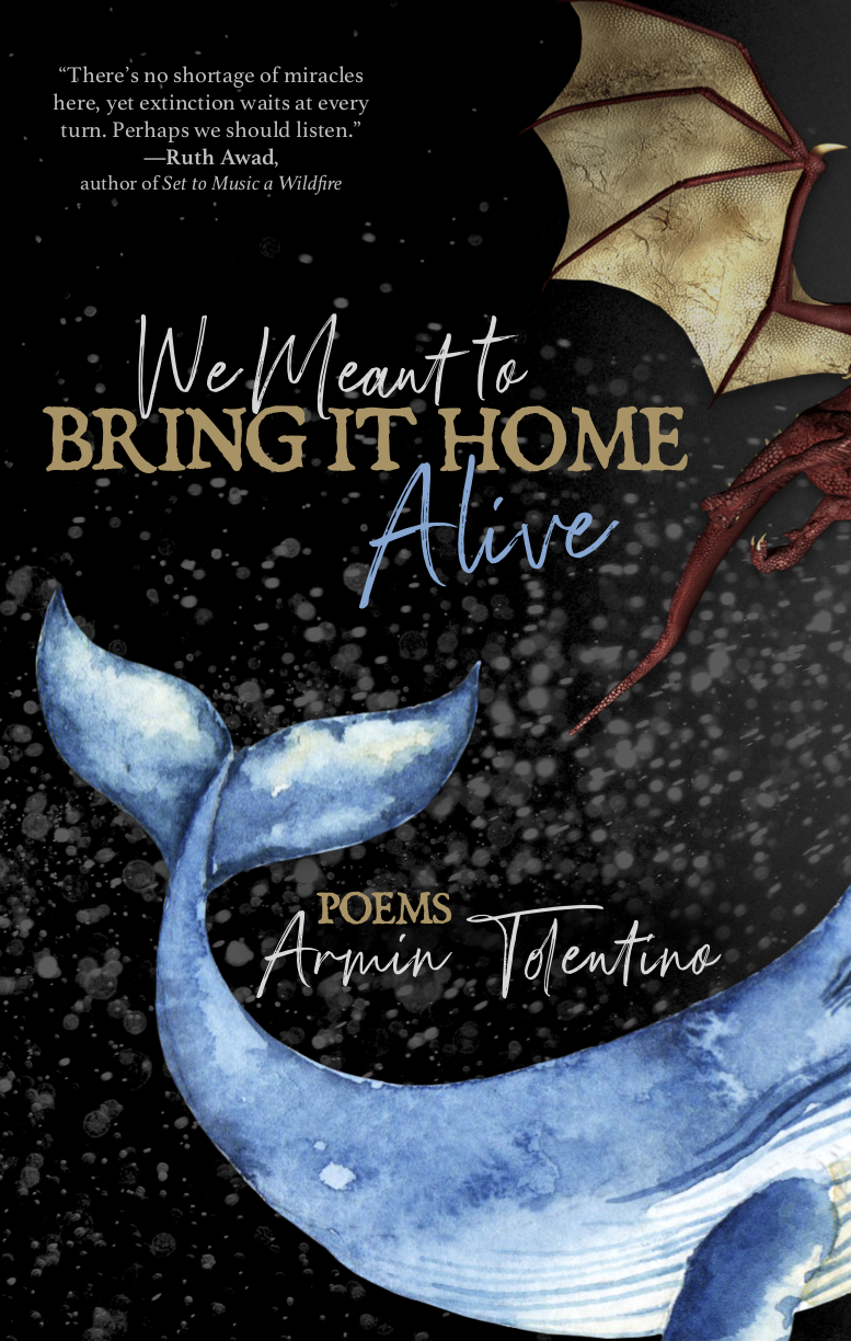 We Meant to Bring It Home Alive cover artwork