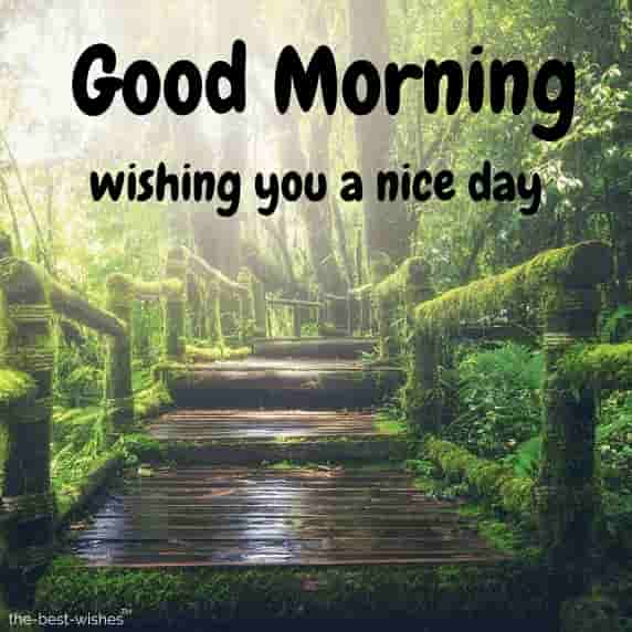 wishing you a nice day image