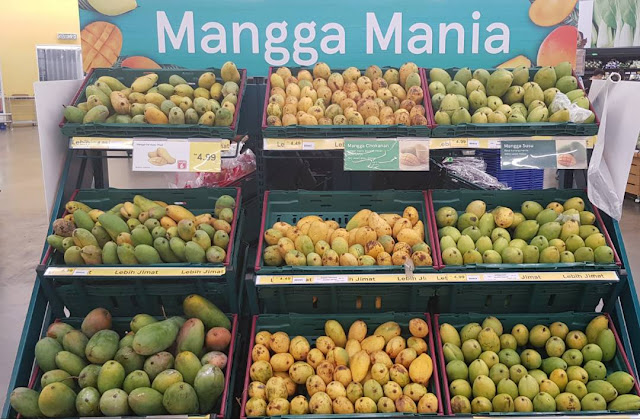 Mango season in Malaysia is on now, mango season on, mango malaysia, food, mango fruits, mango trees, eat fruits malaysia, tourism,