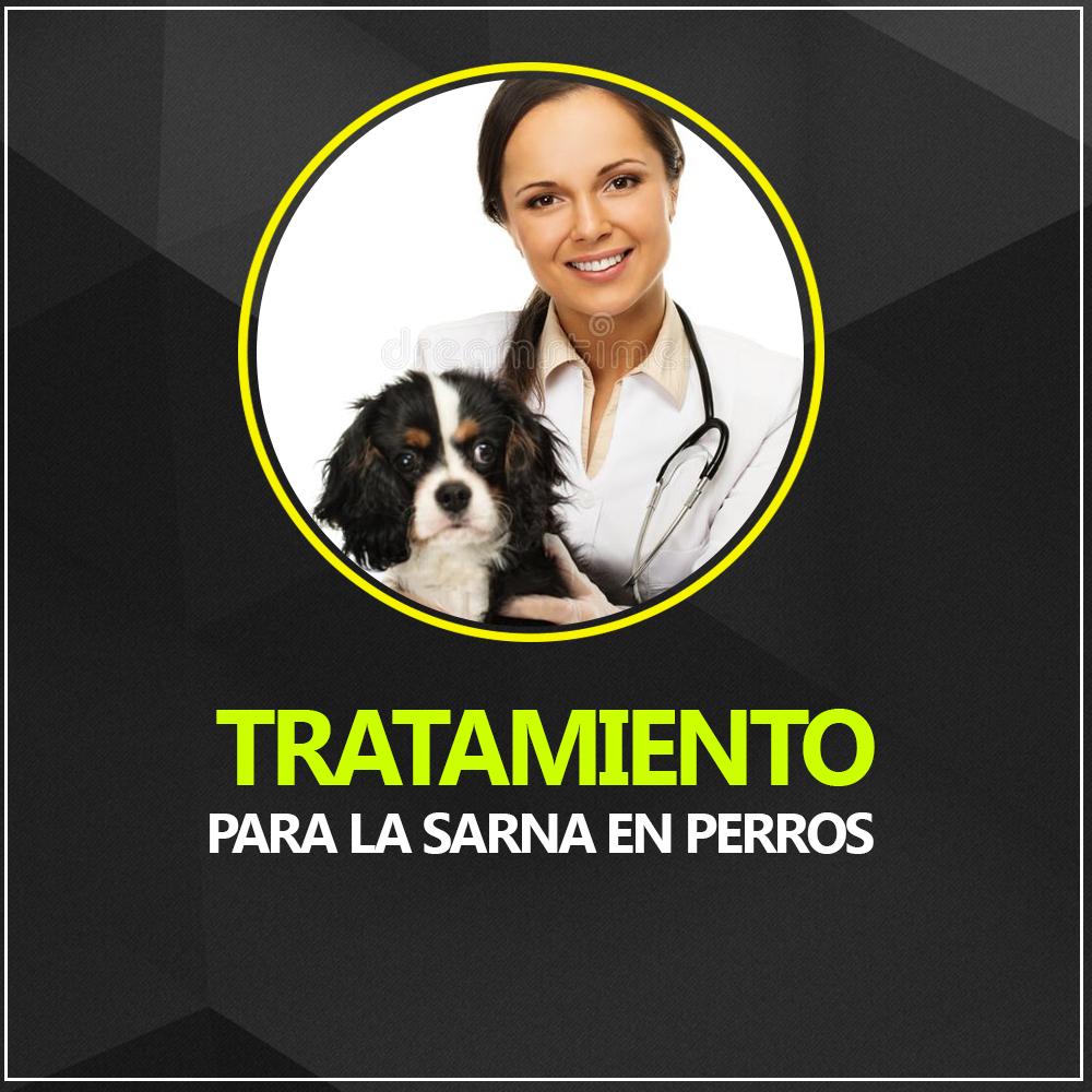 medicamento efectivo para la sarna en perros