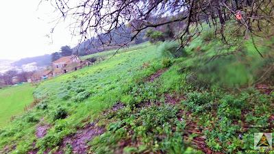 Trail Running Inverno