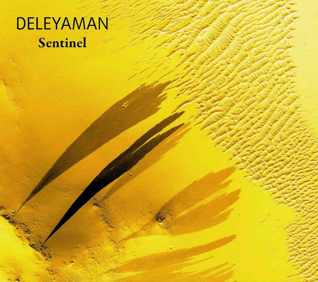Sentinel est le huitième album de Deleyaman et nous invite une fois de plus au voyage