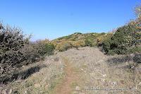 ישראל בתמונות: רמת הגולן, שמורת טבע רכס בשנית