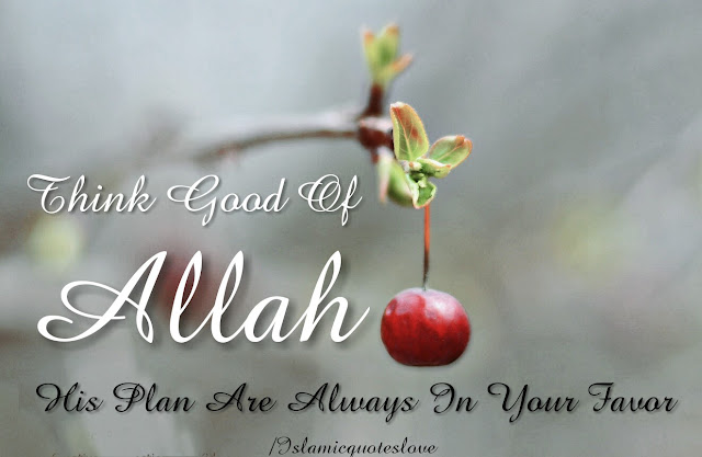 Think good of ALLAH his plan are always in your favor.