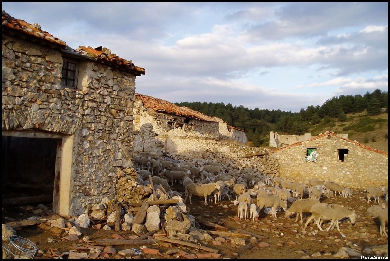 Villanueva De Las Tres Fuentes. Ruinas (1)
