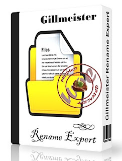 Gillmeister Rename Expert Business v5.3.1 Full Version With Crack