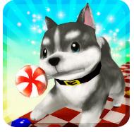 Pretty Adventure - puppy run Mod Apk
