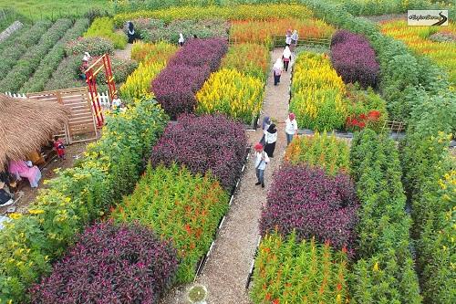 taman bunga shinta serang banten