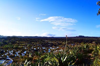 Pequeñas Lagunas  Roraima
