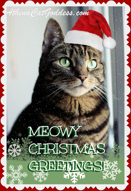caturday art meowy xmas