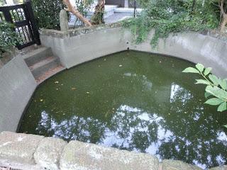 日親百日水行の池