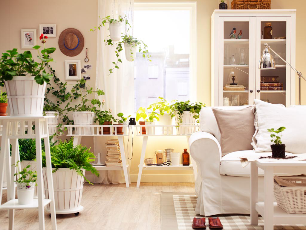 Houseplans Are Tricky Business In Bedrooms Yes Nature Is A Beautiful Thing And Small Plant Or Two Can Certainly Enhance Just About Any Environment