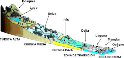 Las cuencas hidrográficas