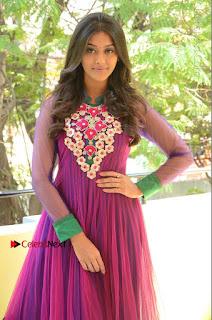 Actress Pooja Jhaveri Latest Stills in Purple Salwar Kameezt at Dwaraka Success Meet  0155.JPG
